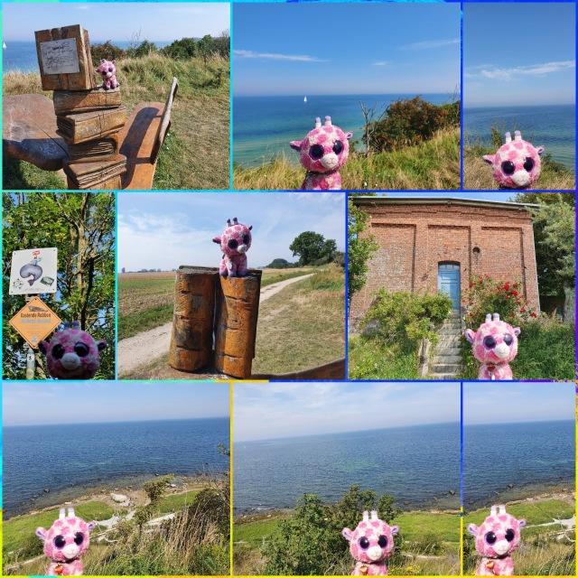 PicsArt_08-09-08.16.24
